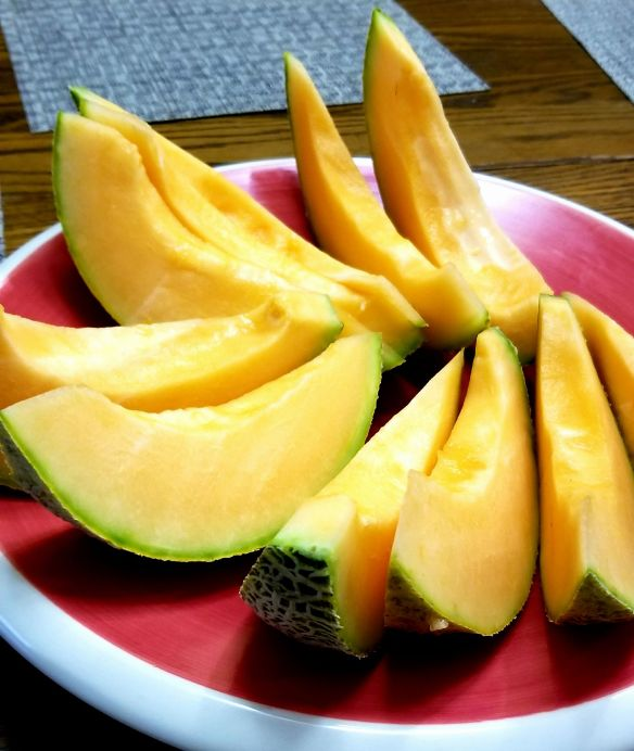 Cantaloupe Bad – Caloric ratio pyramid for melons, cantaloupe, raw includes usda commodity food a415.